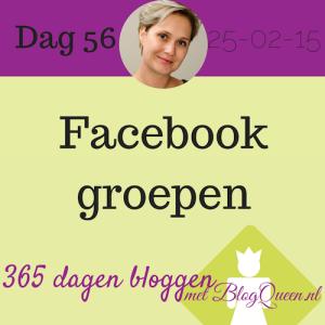 bloggen_tip_365dagen_facebook_doelgroep_groepen