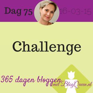 bloggen_tips_365dagen_challenge_organseren